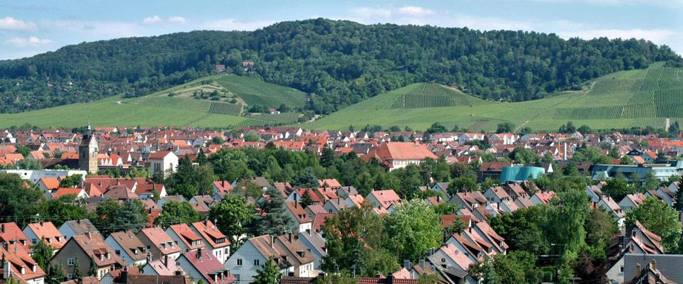 Fellbach & Rems-Murr-Kreis