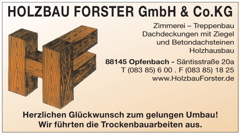 Holzbau Forster GmbH & Co. KG