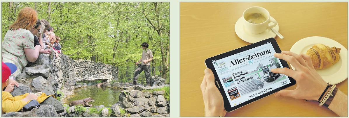 Beim Infotag zu gewinnen gibt es sowohl Eintrittskarten zum Beispiel fürs Otter-Zentrum (l.) als auch ein iPad. Photowerk