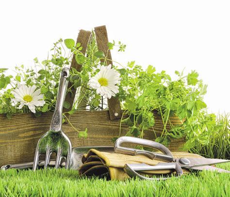 Frühling: Die Gartenarbeit lockt jetzt nach draußen.