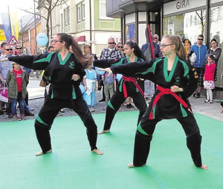 Die Besucher dürfen sich auf viele interessante Vorführungen wie die der Taekwondo-Gruppe freuen.