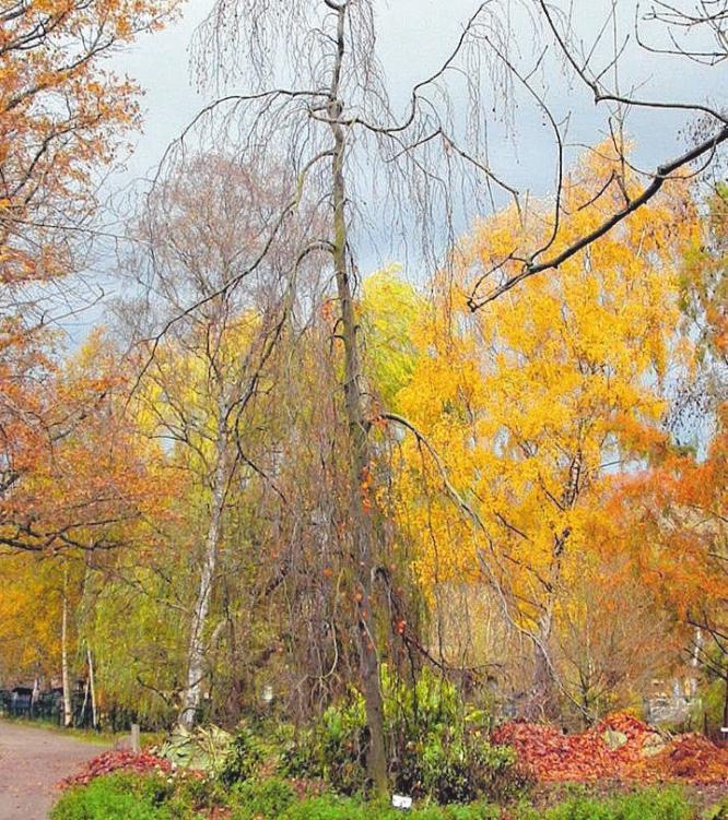 Die Farben des Herbstes. Szene mit Iris Kunz und Udo Schneider. Foto Udo Krause           Foto: Zoo Stralsund