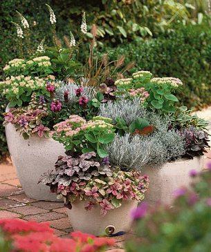 Dekorative Gefäßbepflanzung für den Herbst Foto: Kientzle