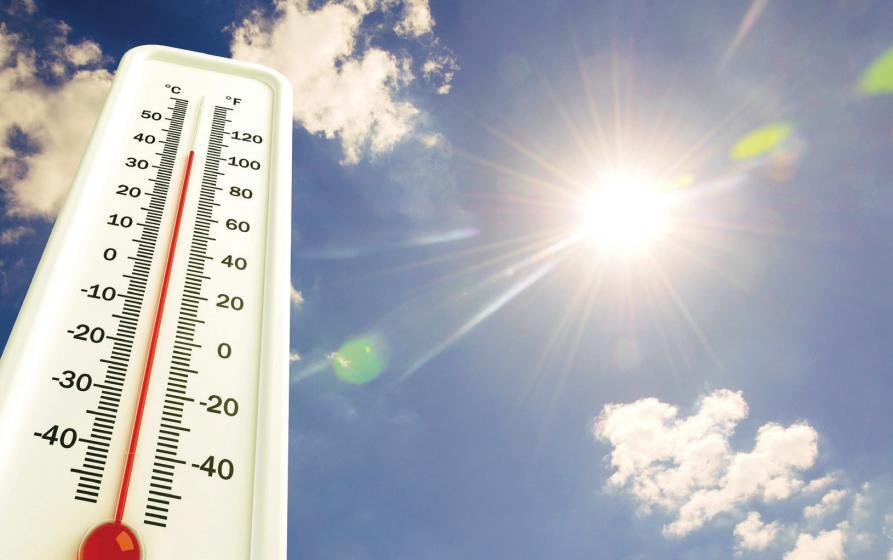 Wer schon ein paar kleine Tipps beherzigt, kommt ohne große Probleme durch die heißesten Sommertage