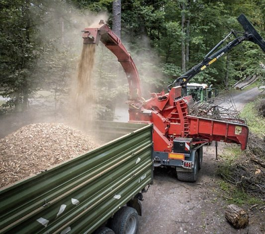 Im Wald werden Hackschnitzel hergestellt.