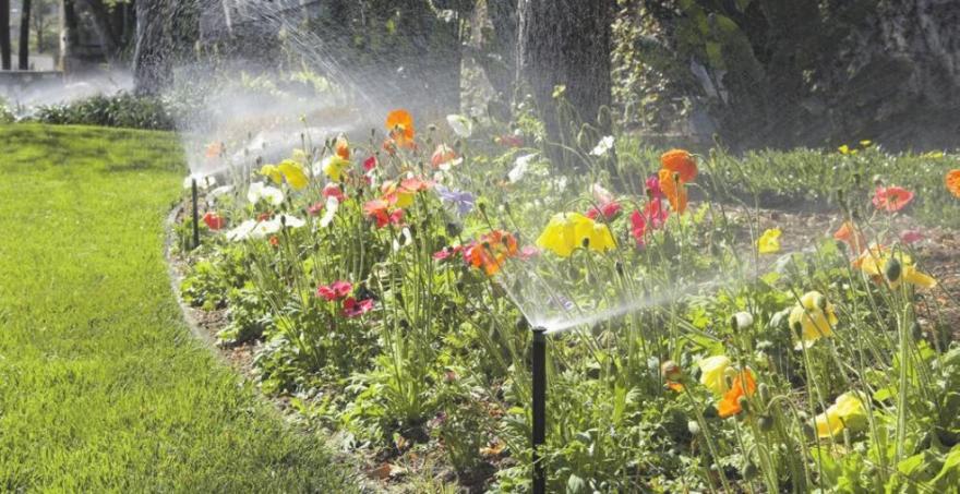 Mit einer regelmäßigen Bewässerung blüht der Garten regelrecht auf. Foto: djd/www.rainpro.de/Hunter