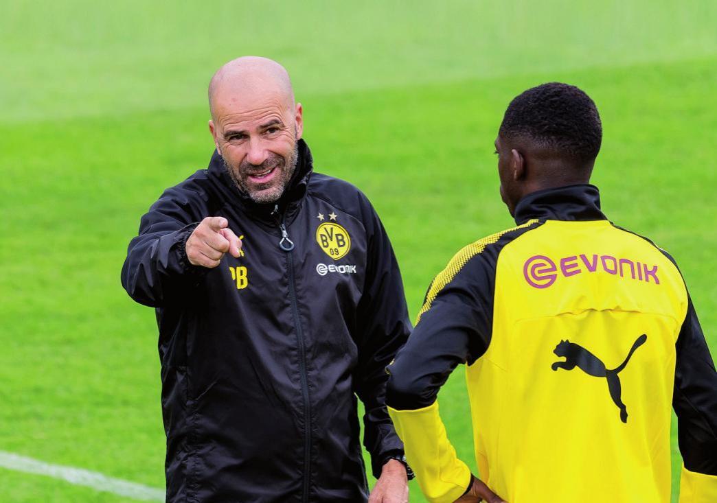 Der andere Oranje-Coach: Peter Bosz ist einer von zwei niederländischen Bundesliga-Trainern.