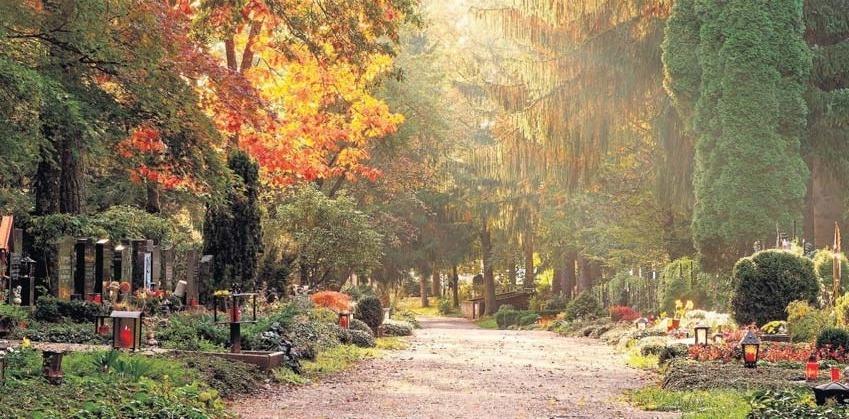 Zu den Gedenktagen im Oktober und November rückt der Friedhof besonders ins Gedächtnis der Menschen.Foto: adobe/stockpics