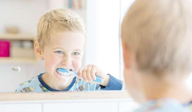 Schon Kinder sollten ans regelmäßige Zähneputzen herangeführt werden, denn gesunde Milchzähne sind wichtig für die gesunde Entwicklung des Kindes Fotos: proDente