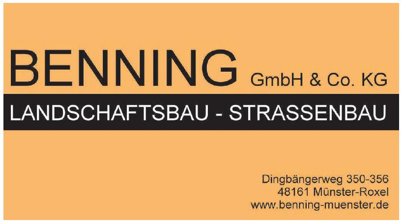 Benning GmbH & Co. KG