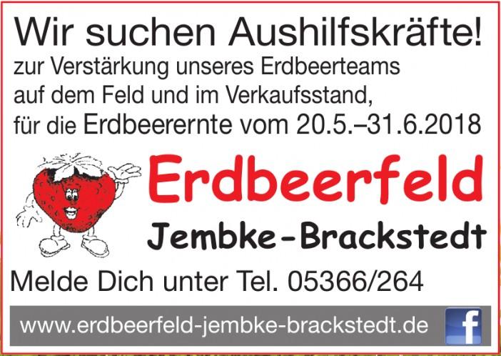 Erdbeerfeld Jembke-Brackstedt