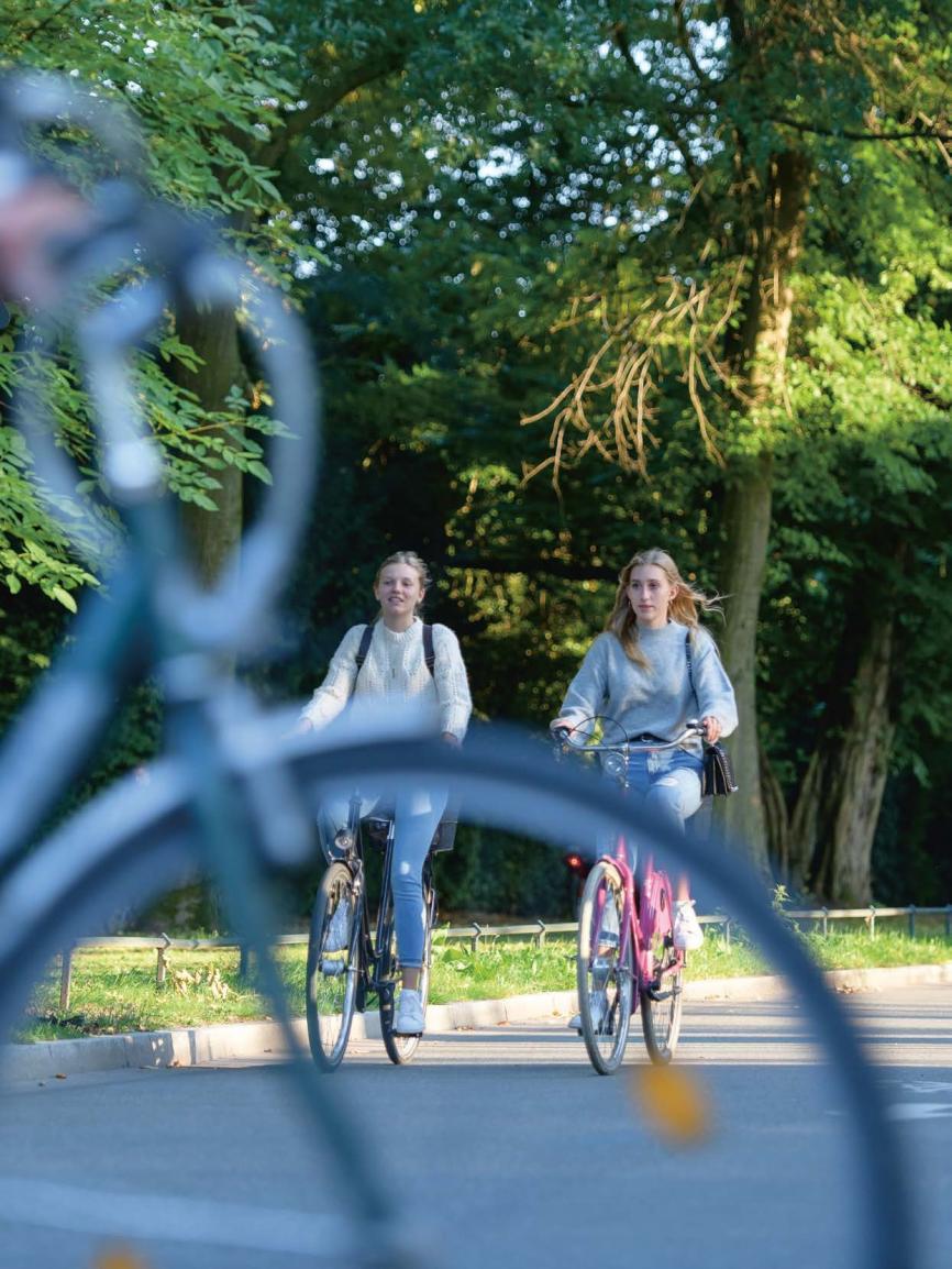 Nachhaltig unterwegsSchon jetzt kann man erleben, wie sich Hamburg verändert hat, seit die ersten Velorouten eingeführt wurden. Das Angebot wird von Einheimischen, aber auch von Touristen genutzt