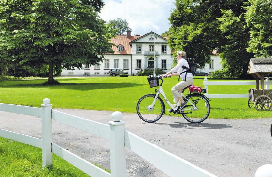 Den Schlosspark mit dem Blick auf das Herrenhaus sollten sich die Besucher Haseldorfs nicht entgehen lassen Fotos: Holstein Tourismus e.V. und photocompany