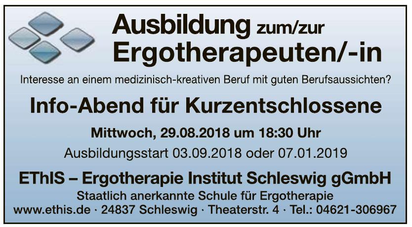 ErgoTherapie Institut Schleswig gGmbH