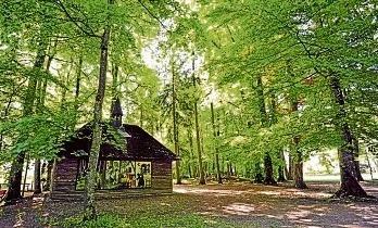 Verträumt, idyllisch, liebevoll – Der Luitpoldpark, das grüne Herz, ist bei allen Schwabmünchnern beliebt und ein Ort, wo man Ruhe und Erholung findet. Fotos: Sabine Presnitz/Franzsika Rüttinger