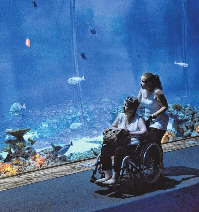 Ein letztes Mal das schillernde Blau des Aquariums im Tierpark Hagenbeck zu erleben, machte Silvia L. aus Lübeck glücklich.