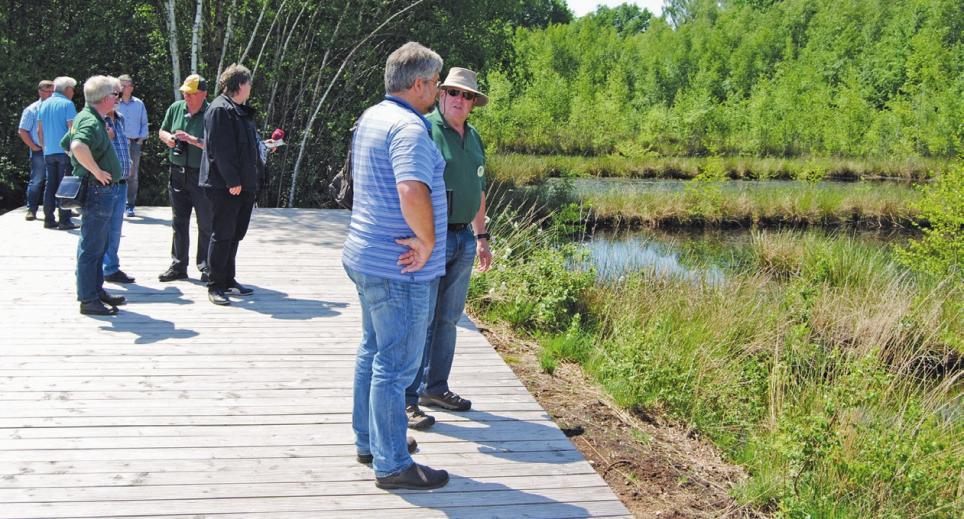 Von der Plattform aus haben die Besucher einen guten Blick in die Natur.