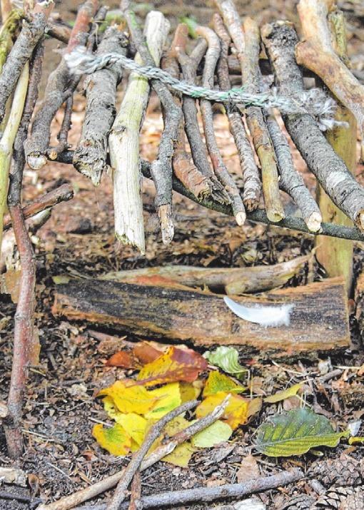 Im Wesloer Forst liegt das Spielzeug im Wald.