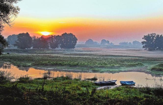 Malerisch zeigt sich der sommerliche Sonnenaufgang über der Oder bei Lebus. Wenn der Tag erwacht über den Vorflutern der Oder in der Nähe des Kietzer Berges steigen Nebelschwaden auf und verleihen der Landschaft etwas Mystisches. Fotos (4): Matthias Lubisch