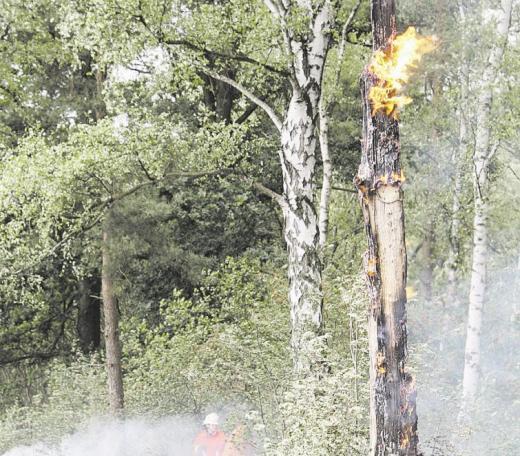 Durch Thermik entstehen gefährliche Winde, die immer wieder neue Feuer entfachen. CITyPRESS24 FOTO- UND PRESSEAGENTUR