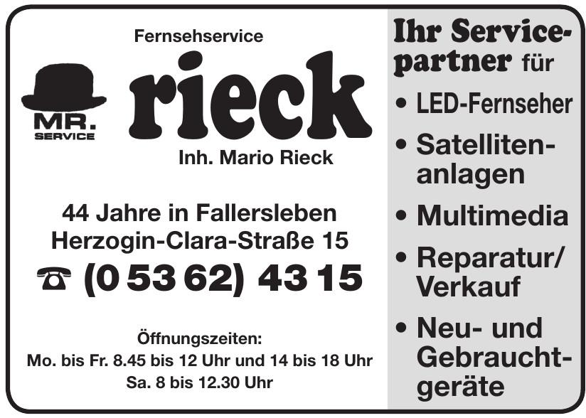 Fernsehservice Rieck Inh. Mario Rieck e.K.
