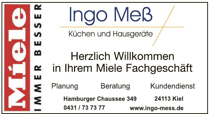 Ingo Meß