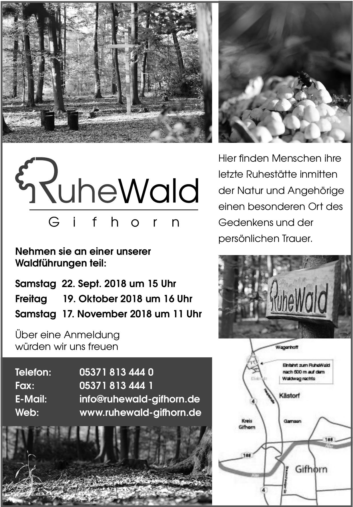 Ruhe Wald Gifhorn