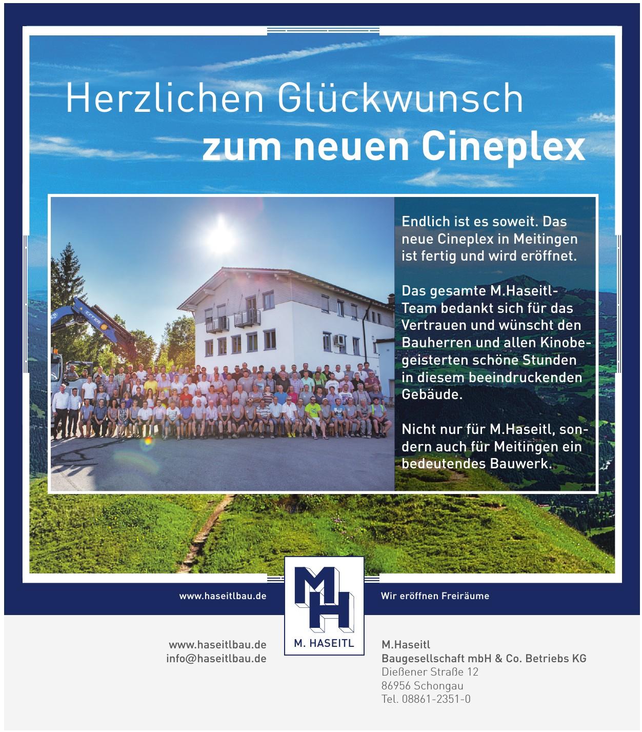M.Haseitl Baugesellschaft mbH & Co. Betriebs KG