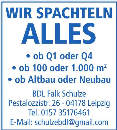 BDL Falk Schulze