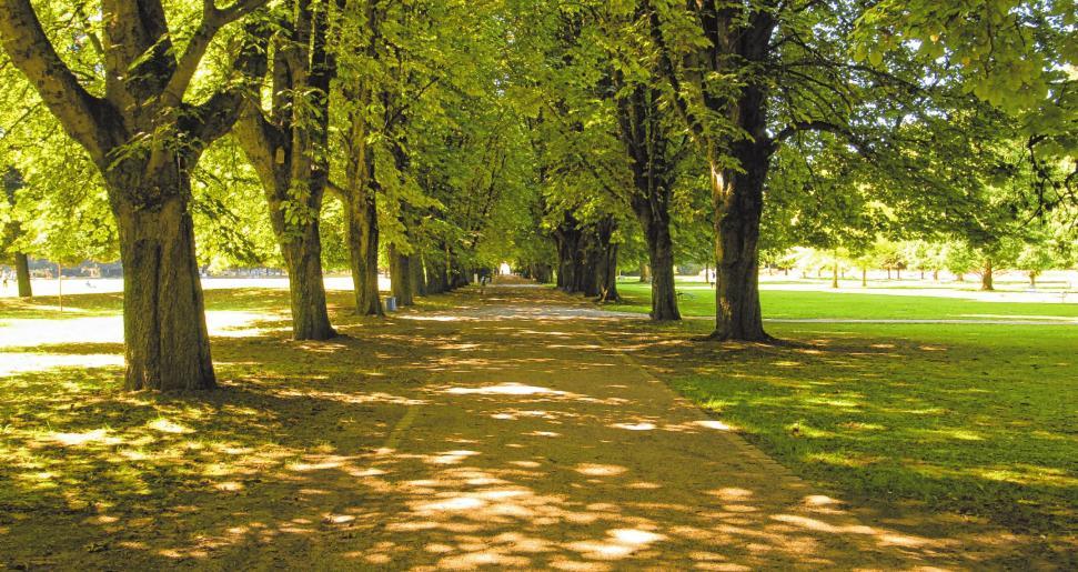 Erholung und Entspannung im Park