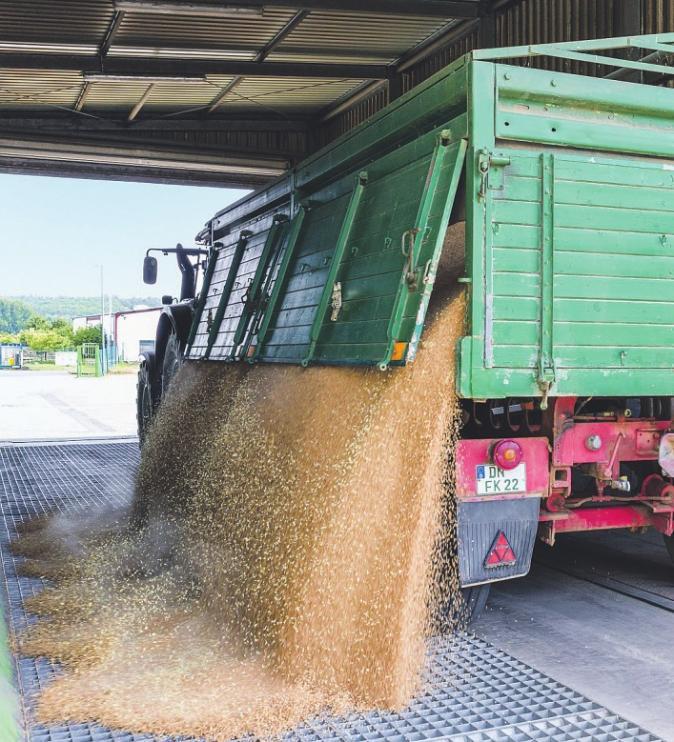 In der Landwirtschaft sind Genossenschaften nicht mehr wegzudenken Bild: Juliane Herrmann