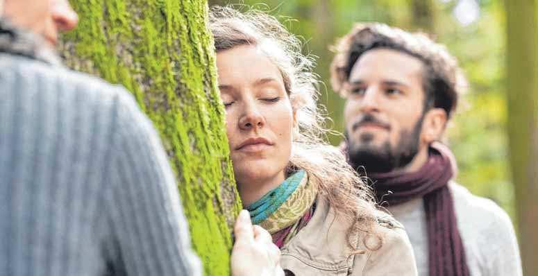 Den Baum zu berühren, an dessen Wurzeln ein lieber Mensch bestattet ist, gehört zu den schönsten Trauerritualen in freier Natur. FOTO: DJD/FRIEDWALD