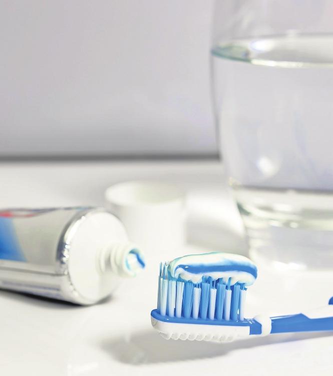Zahnärzte empfehlen Bürsten mit kurzem Kopf und abgerundeten Borsten. Foto: Pixabay/Bru-nO