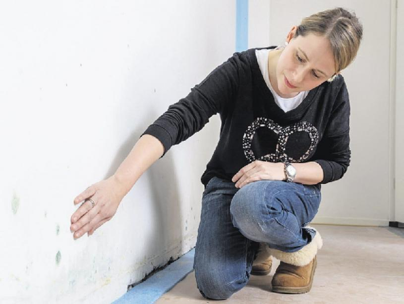 Zu kühle Kellerräume können ideale Voraussetzungen für Schimmelpilzbefall entwickeln Foto: pr