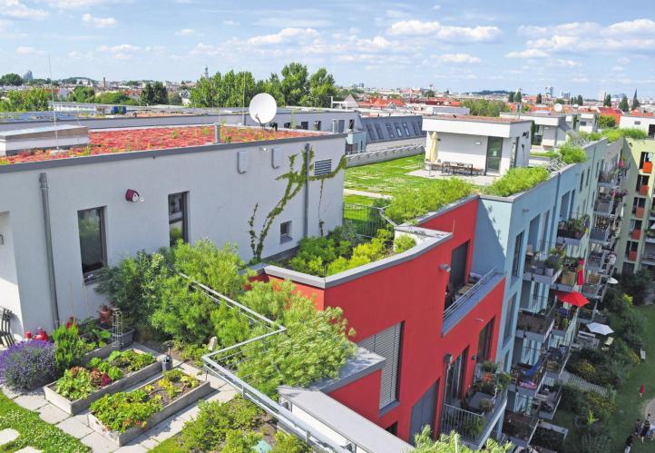 Deutschlands Dächer und Fassaden sollen grün werden