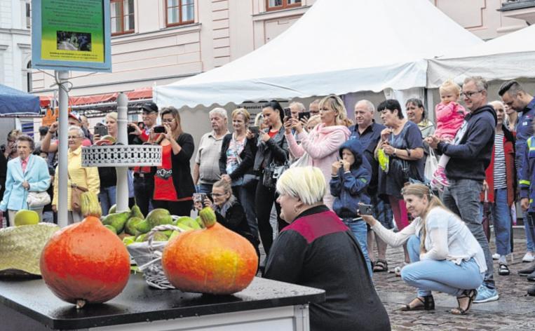 25 Aussteller auf der Güstrow-Schau auf dem Güstrower Marktplatz