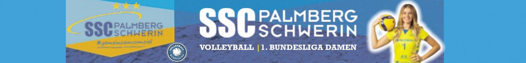 SC Palmberg Schwerin: Die Mannschaft