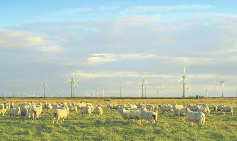 Weg frei für die Energiewende