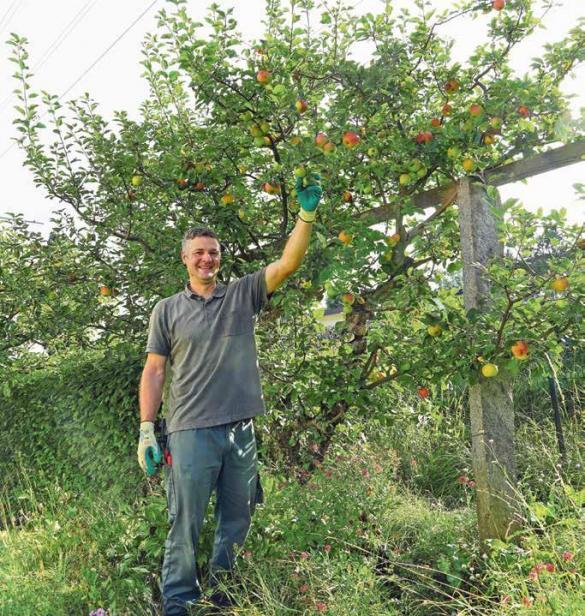 Patrick Zuberbühler aus Dietikon: Wächst der Baum, freut sich der Mensch