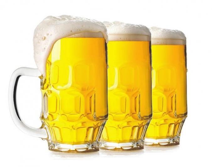 Vom Feld ins Glas: der Weg des Bieres