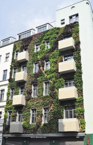 Grüner Schutzmantel fürs Haus