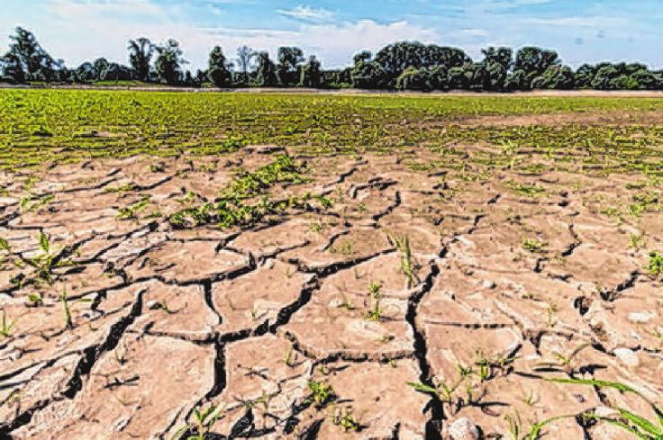Klimawandel schlägt auch auf die Gesundheit