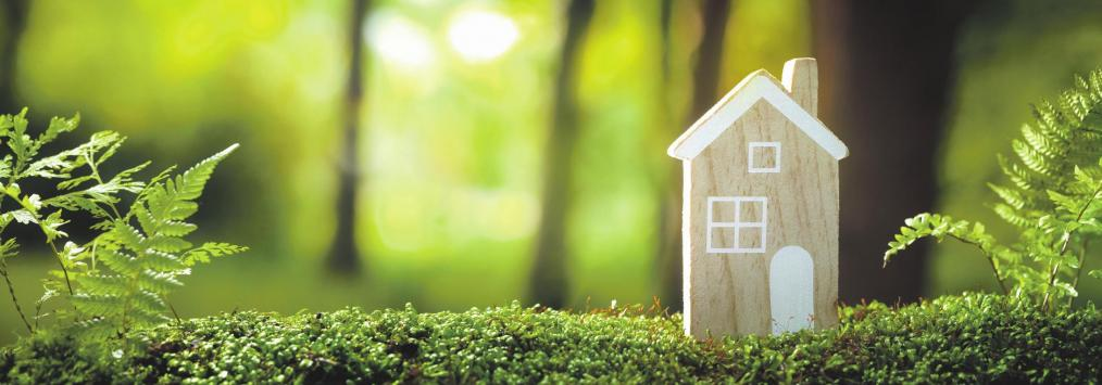 Exklusiv & Nachhaltig - für eine lebenswerte Zukunft