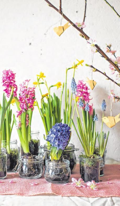 So kommt der Frühling in die Stube