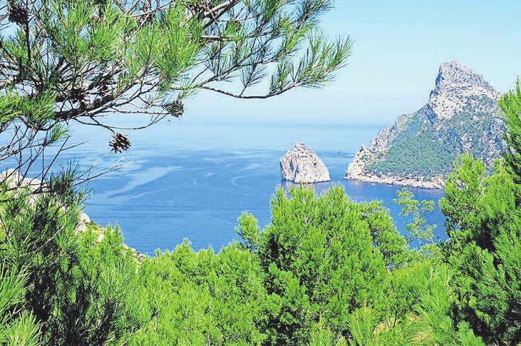 Traumurlaub in Sicht: (1) Mallorca