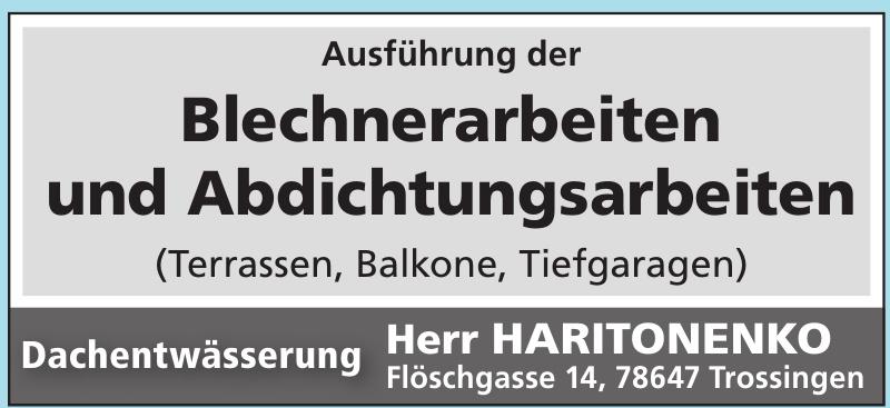 Dachentwässerung Herr Haritonenko
