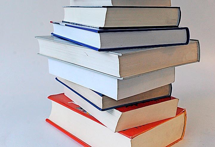 Lesestoff: Bücher gestapelt FOTO: JENS KALAENE (DPA)
