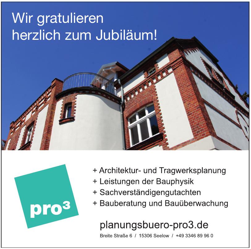 planungsbüro pro³