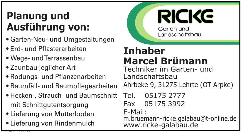 Marcel Brümann Techniker im Garten- und Landschaftsbau
