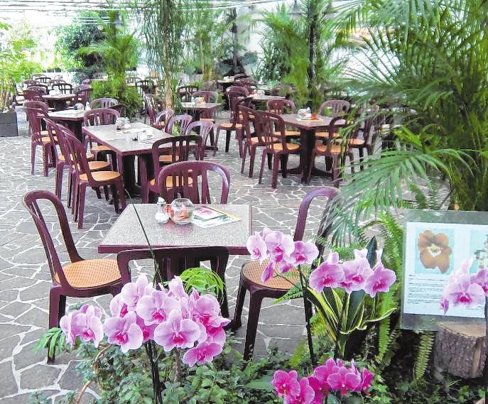 Die blühenden Orchideen sorgen für ein besonderes Ambiente im Café. Bild: Café Orchidee